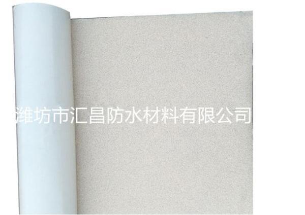 HDPE高分子防水卷材